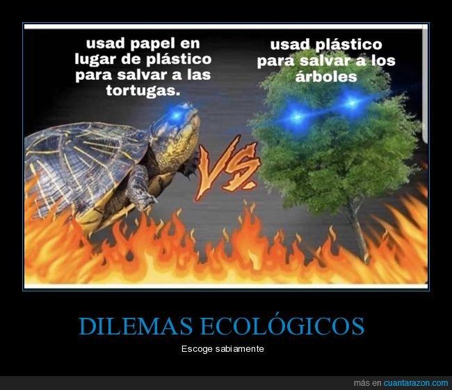 árboles,papel,plástico,salvar,tortugas