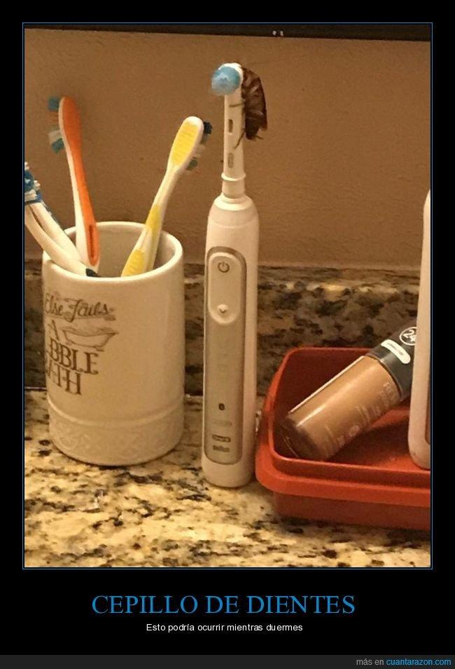 asco,cepillo de dientes,cucaracha