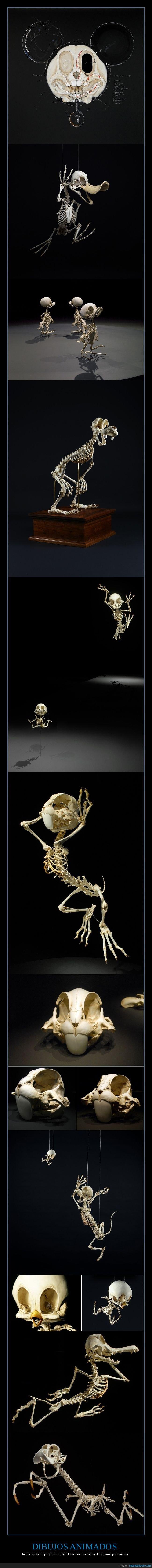 dibujos animados,esqueletos,personajes
