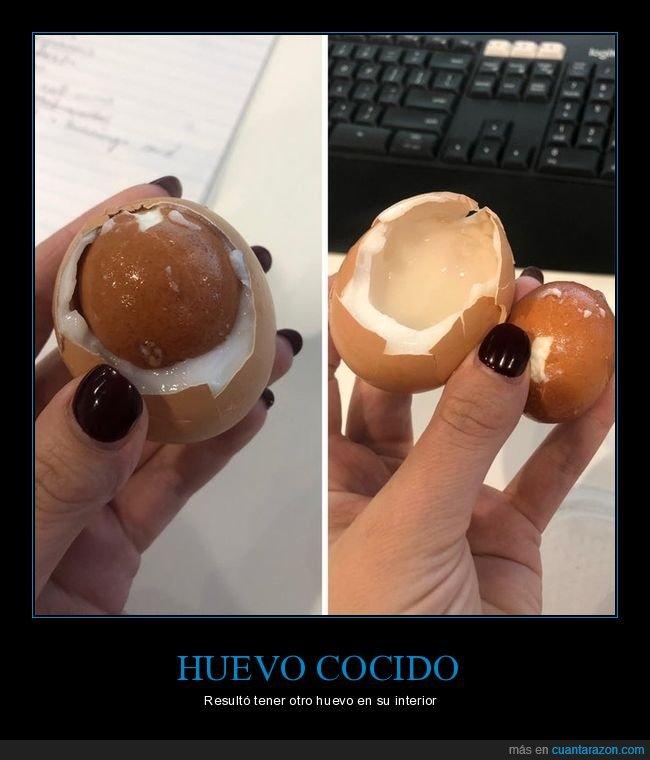 cocido,huevo,wtf