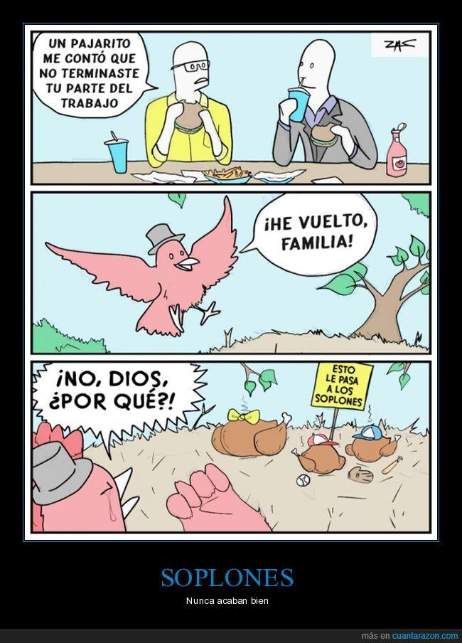 familia,pájaro,soplones,trabajo