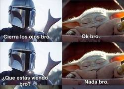 Enlace a Forever bros