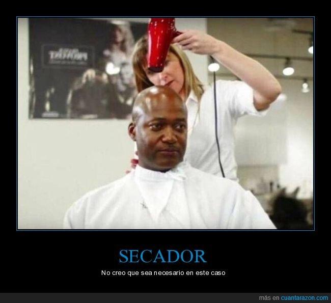 calvo,peluquería,secador