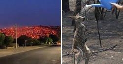 Enlace a Fotos que resumen el infierno que está teniendo lugar en Australia