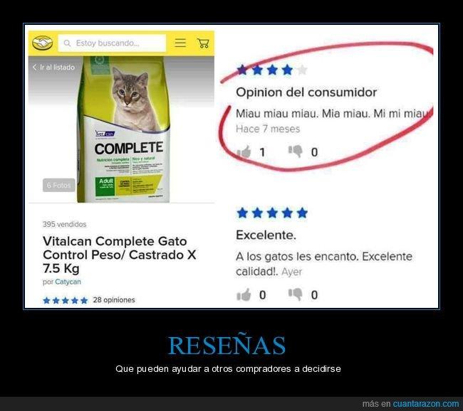 comida para gatos,consumidor,gato,miau,opinión