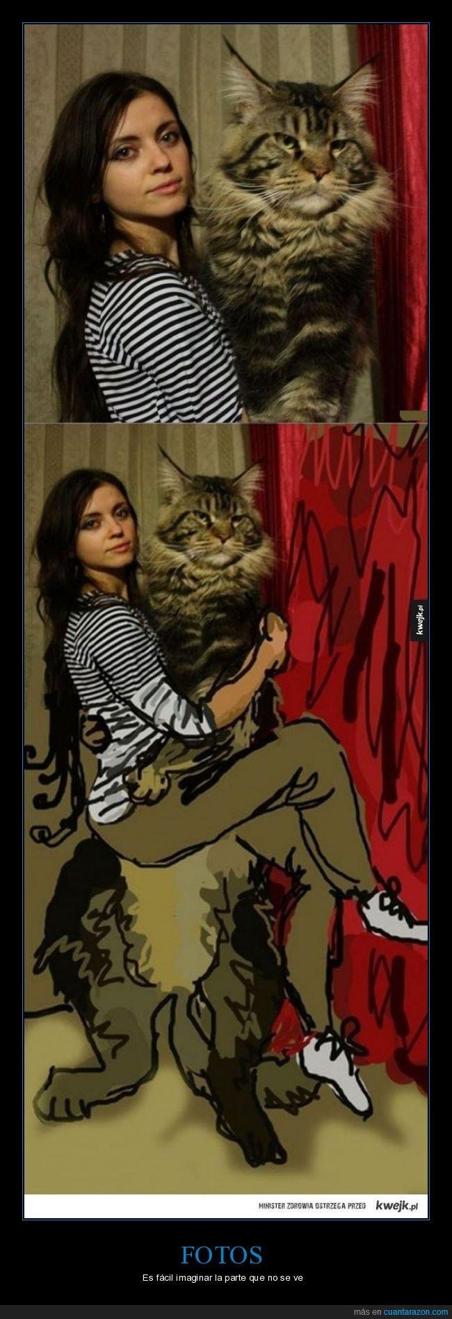 dibujo,gato,gigante