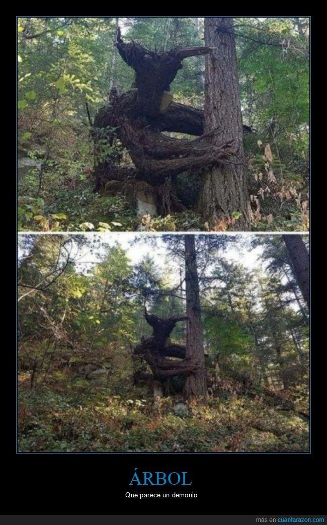 árbol,demonio,parecidos