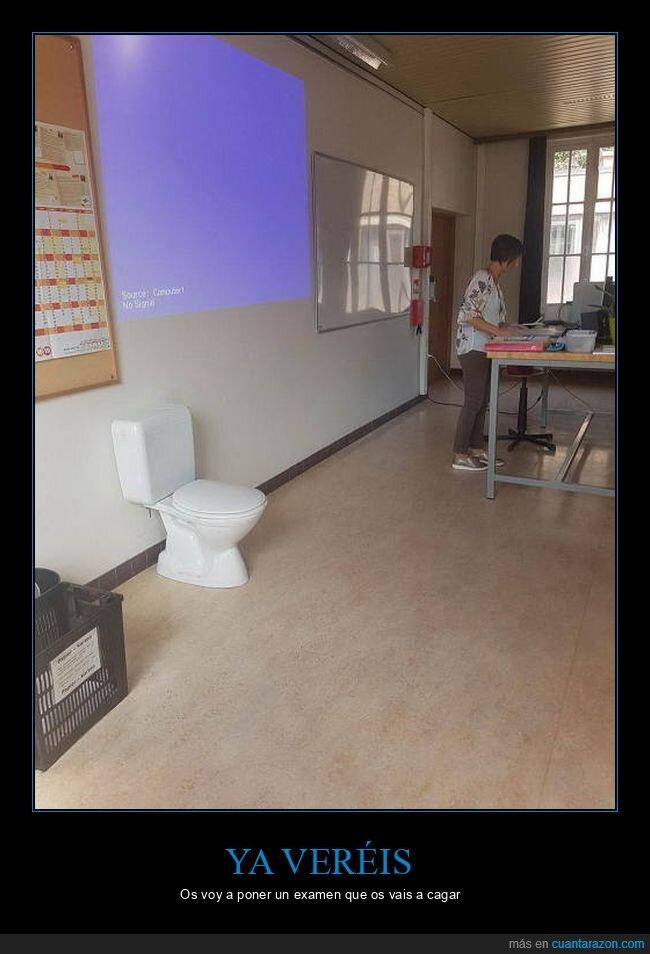 cagar,urinario,wc