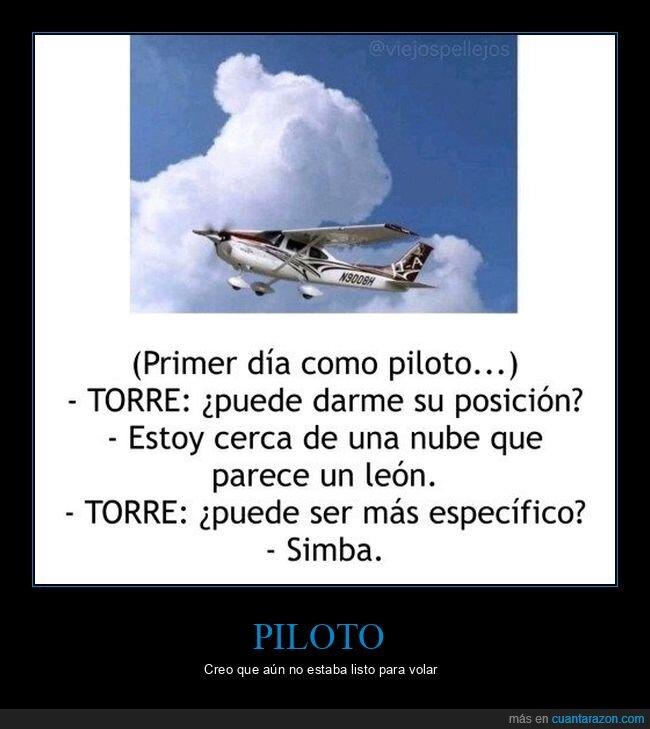 avión,específico,león,nube,posición,simba