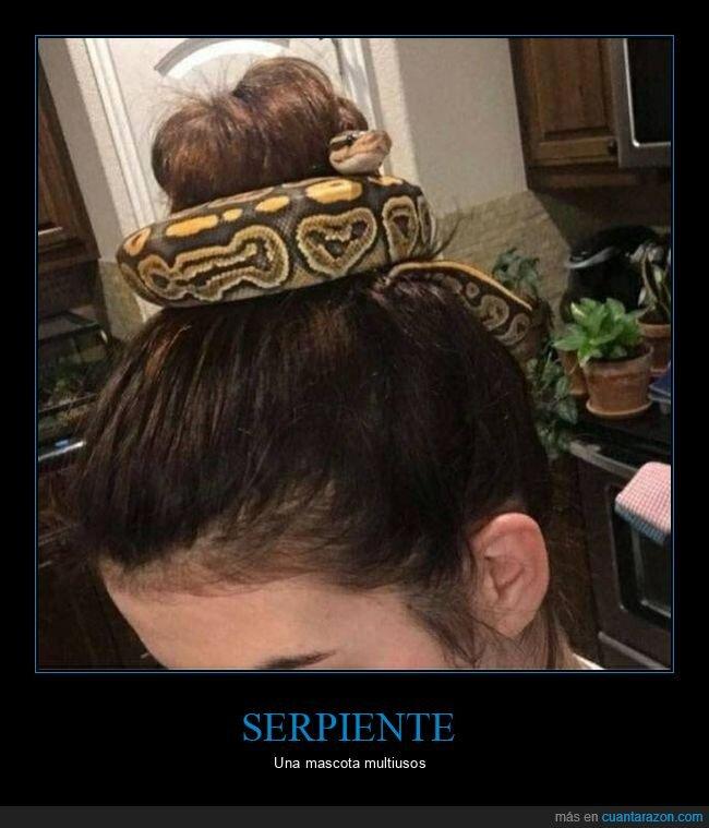 pelo,serpiente,wtf