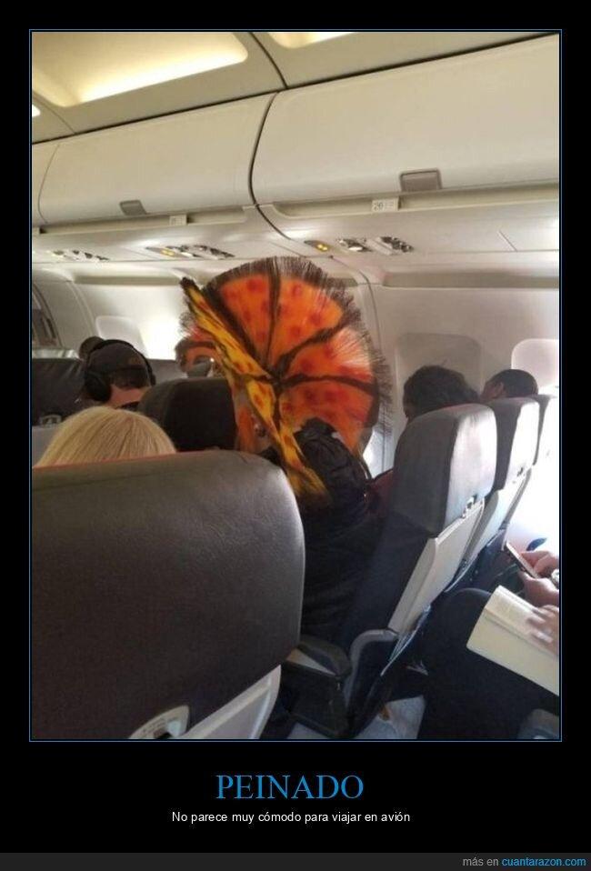 avión,corte de pelo,pinado,wtf