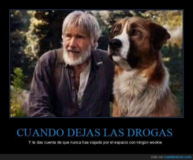 chewbacca,drogas,espacio,han solo,perro,star wars,wookie