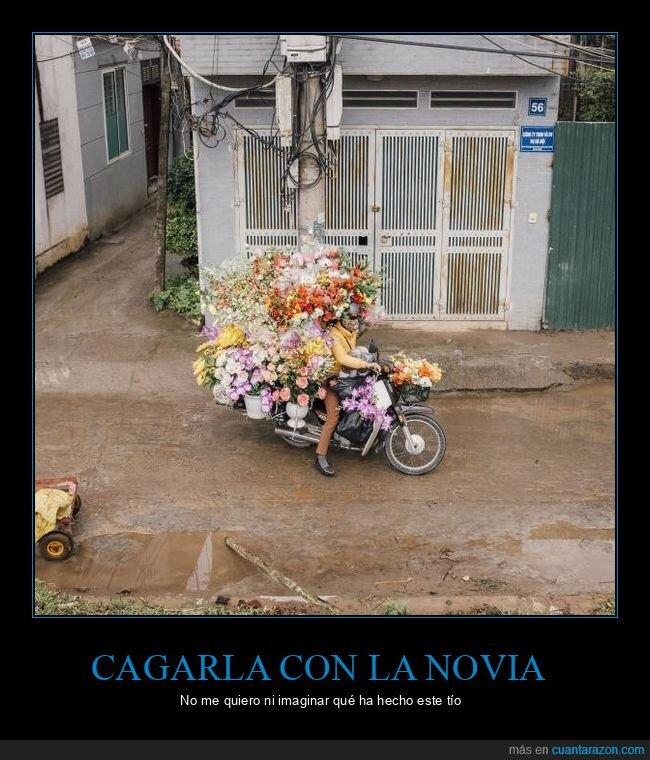 flores,moto,wtf