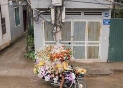 Enlace a ¿Florista ambulante o novio que la ha cagado mucho?