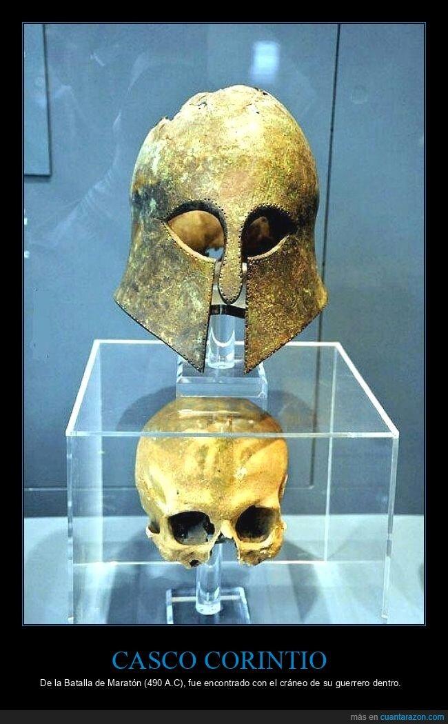 casco,corintio,cráneo,curiosidades