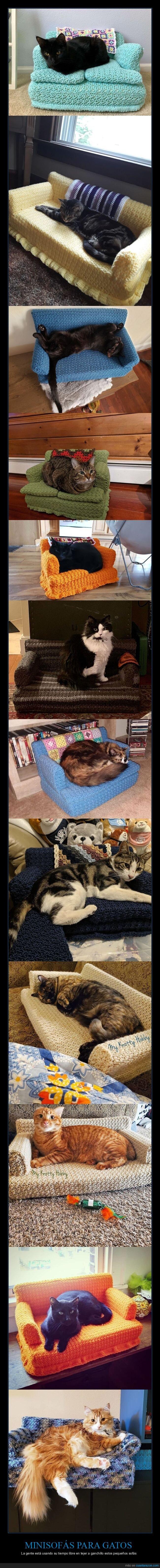 ganchillo,gatos,sofás