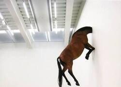 Enlace a Mientras tanto, en una galería de arte random...