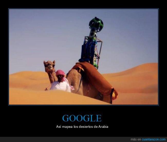 camello,desierto,google maps
