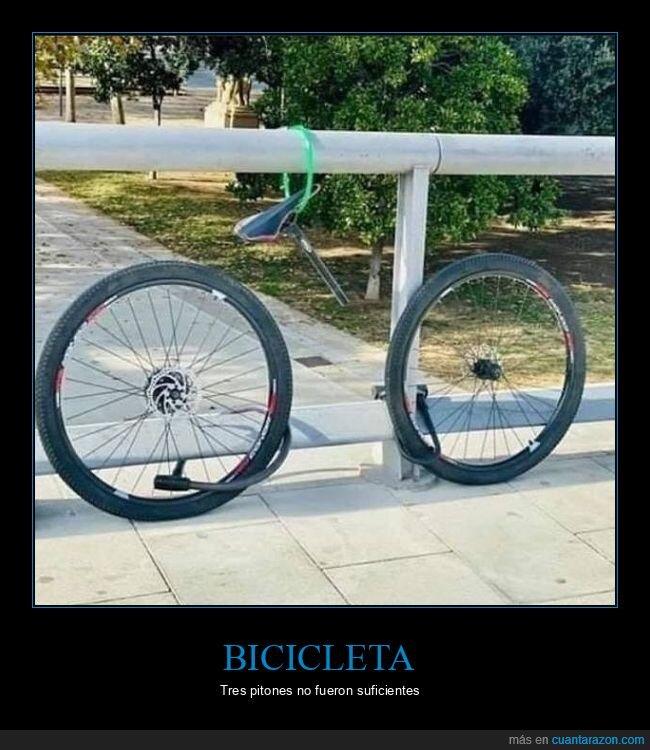 bicicleta,pitones,robo,wtf