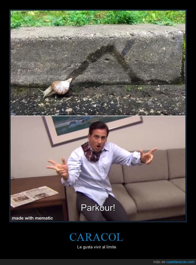 caracol,parkour,wtf