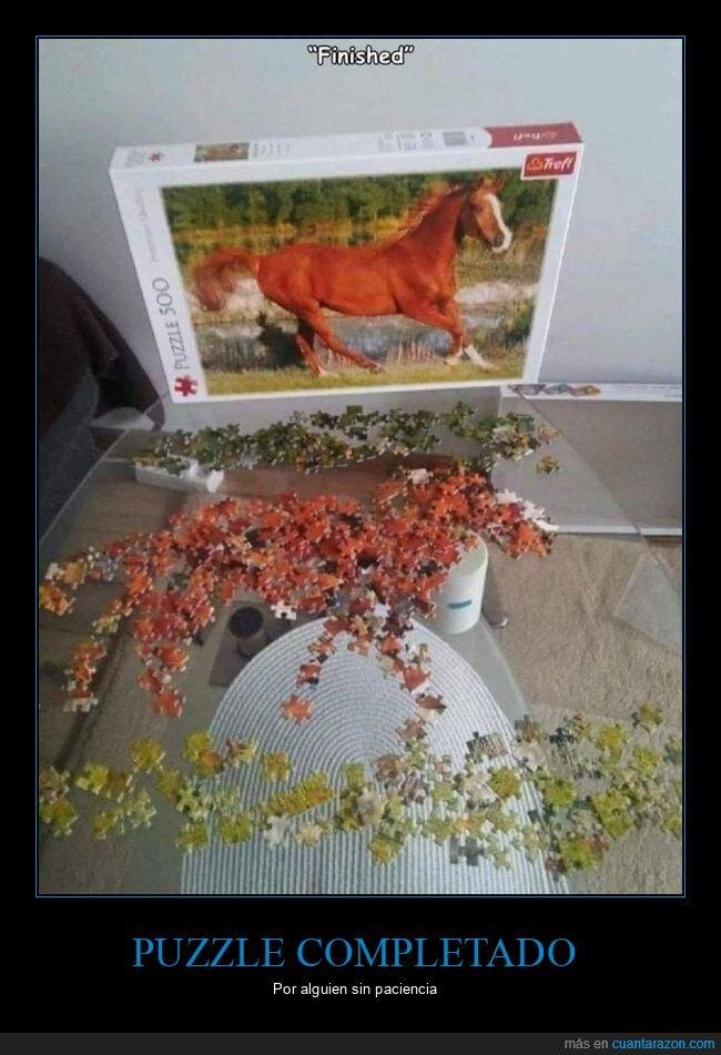 caballo,puzzle,wtf
