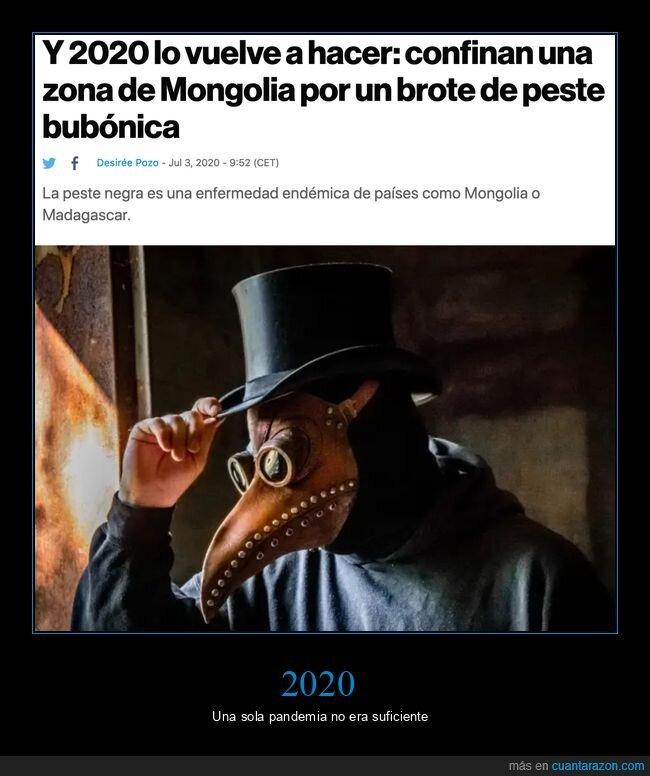 2020,mongolia,peste bubónica,wtf