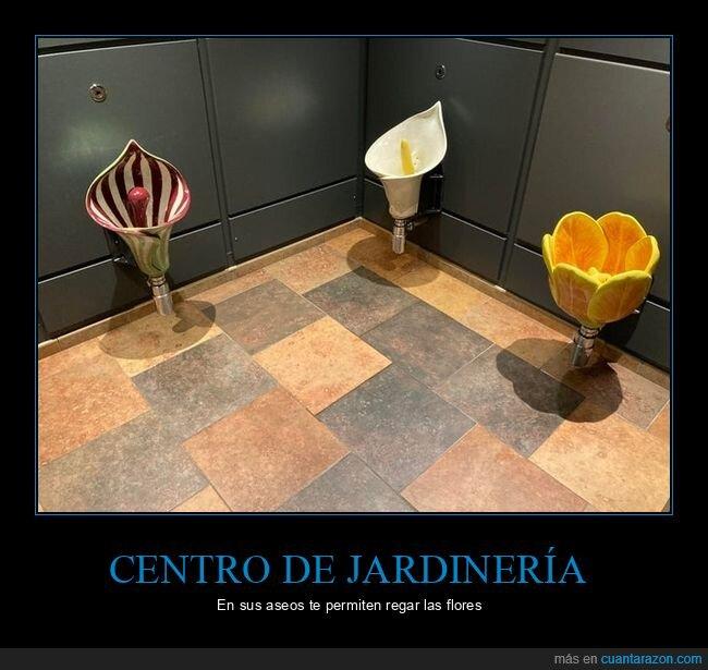 aseos,centro de jardinería,flores