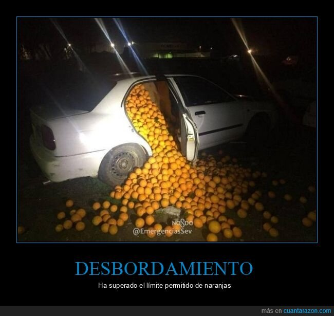 coche,naranjas,wtf