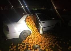Enlace a Le deben gustar mucho las naranjas...
