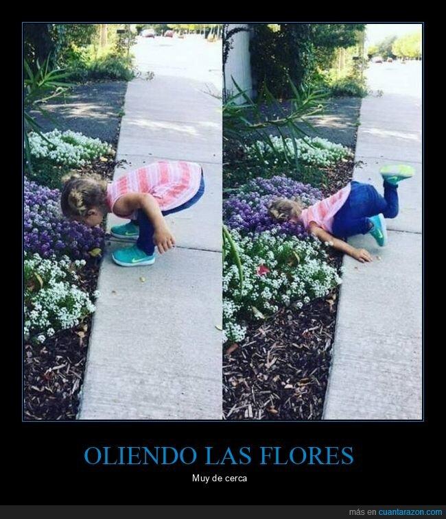 fails,flores,niña,oler