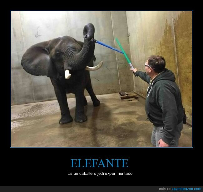 elefante,sables láser,star wars