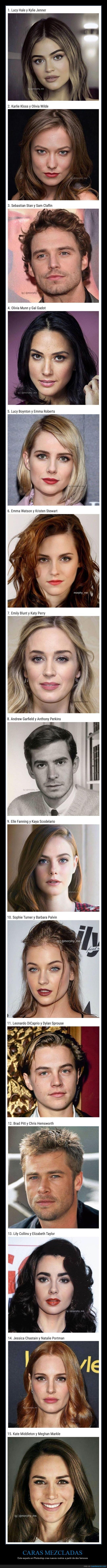 caras,famosos,mezclas