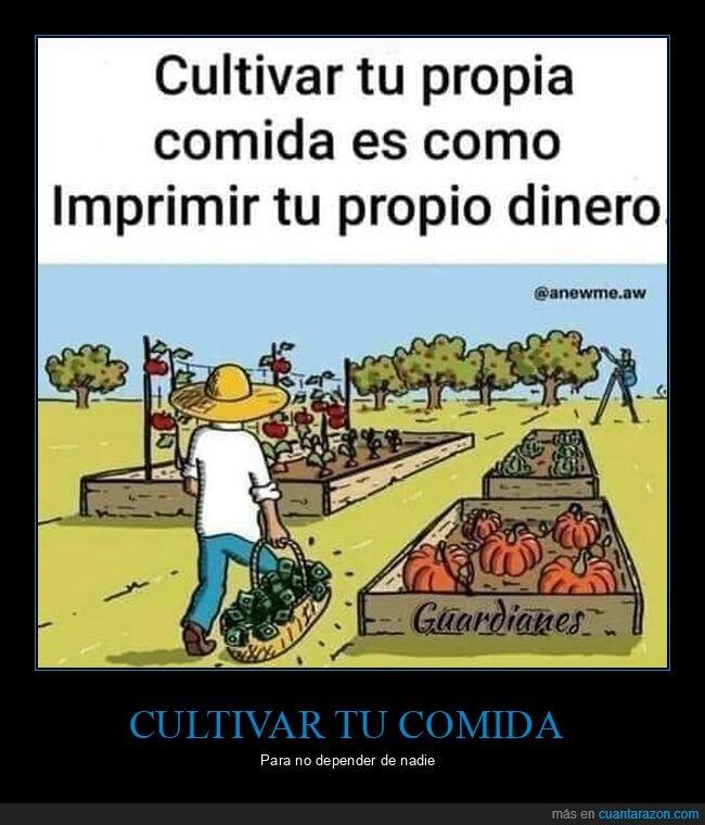 comida,cultivar,dinero