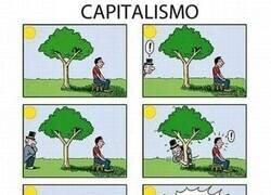 Enlace a Capitalismo resumido