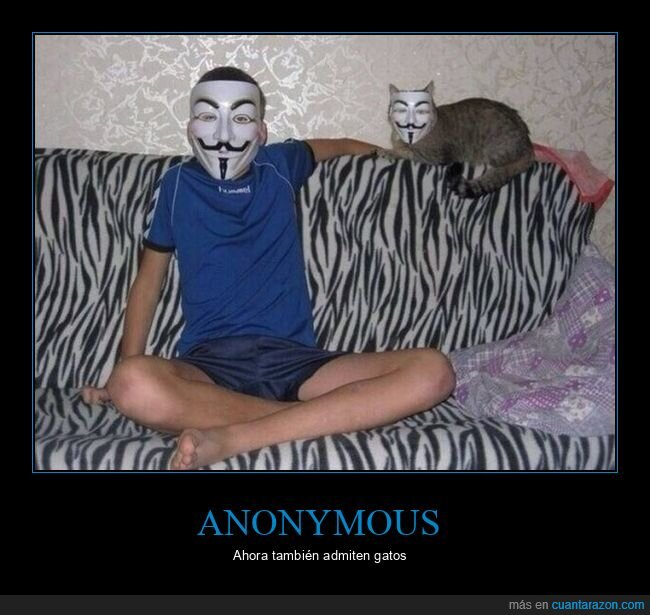 anonymous,gatos,máscaras
