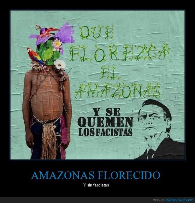 amazonas,bolsonaro,fascistas,florecer,políticos,quemar