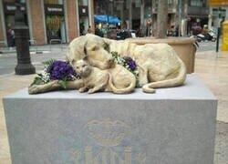 Enlace a Animales homenajeados