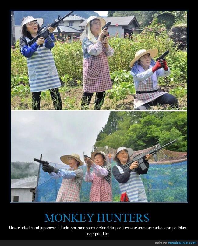 cazadoras de monos,cosechas,curiosidades