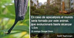 Enlace a Datos interesantes sobre lo que pasaría en la Tierra si nos extinguiéramos