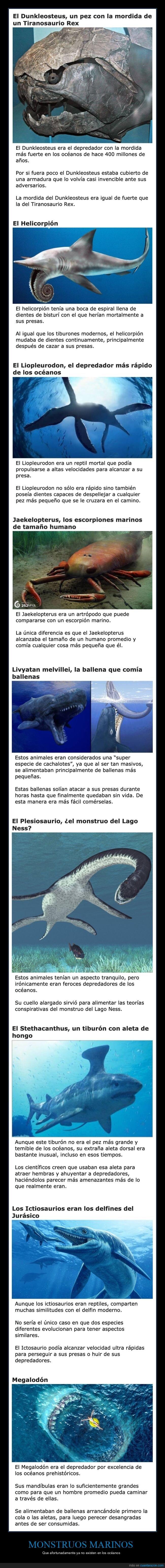 animales,extintos,monstruos marinos,océanos