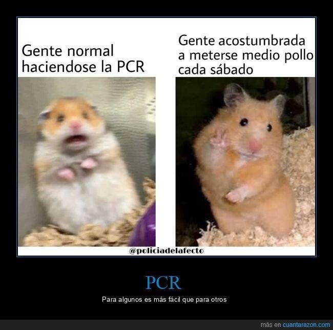 acostumbrados,coca,coronavirus,pcr