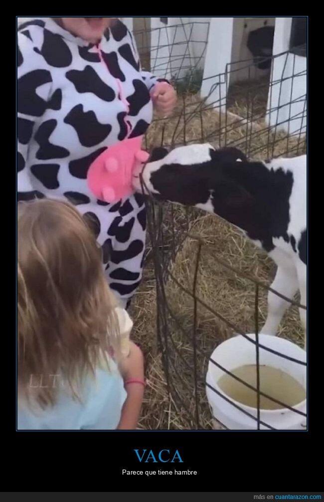 disfraz,ubre,vaca