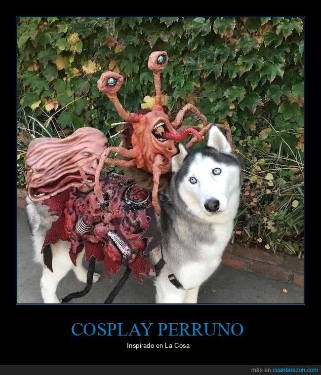 cosplay,la cosa,perros