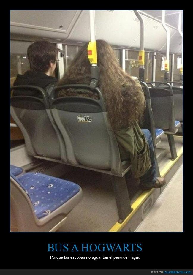 autobús,hagrid,harry potter,hogwarts
