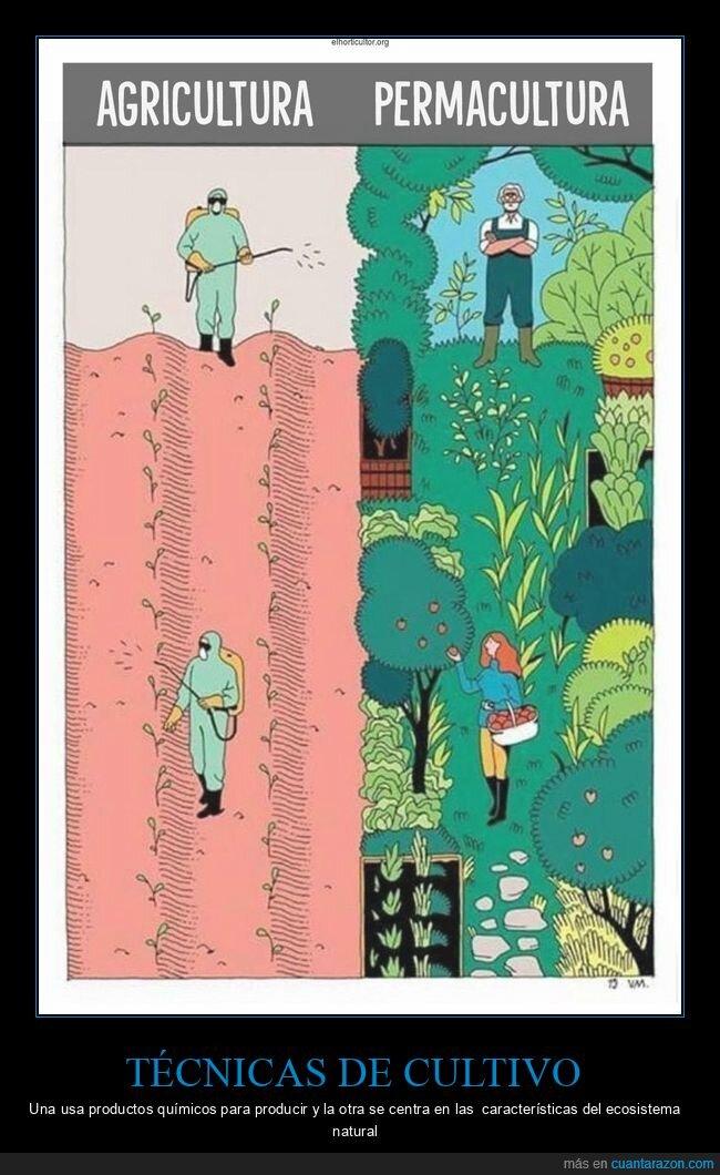 agricultura,diferencias,permacultura