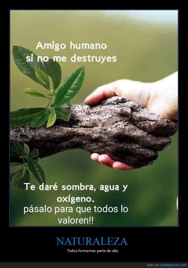 destruir,humanos,naturaleza