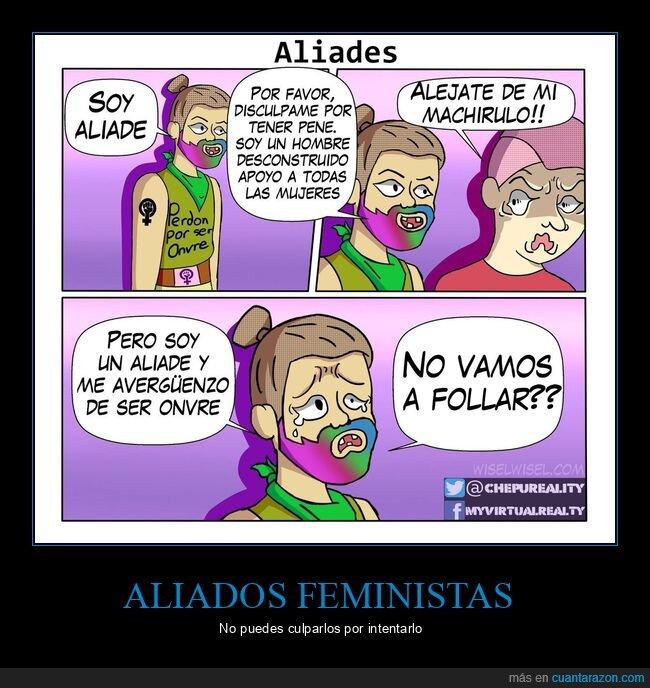 aliado,feministas