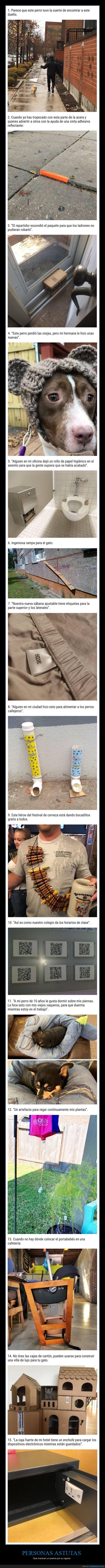 astutos,ingeniosos