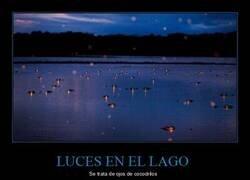 Enlace a Extrañas luces en el agua