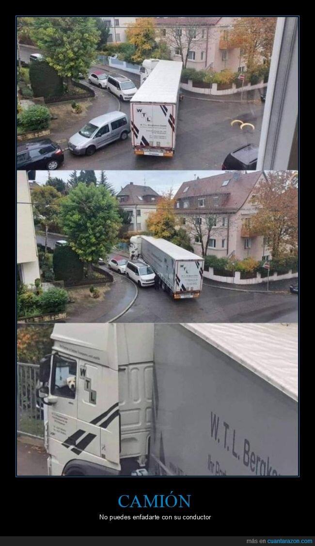 camión,coches,fails,perro